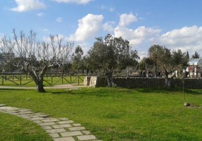 Parco di Belloluogo